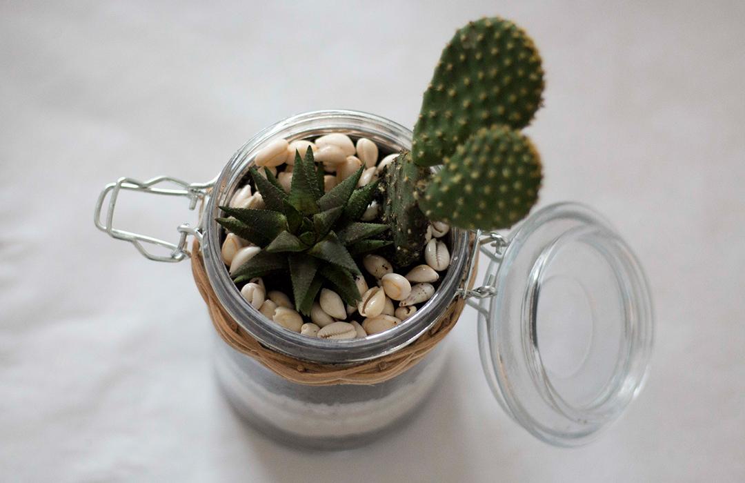 Un terrarium cactus les brindilles inspirations d co for Deco quoi mettre dans un grand vase