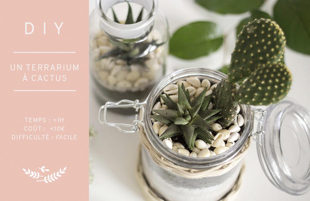un terrarium  u00e0 cactus