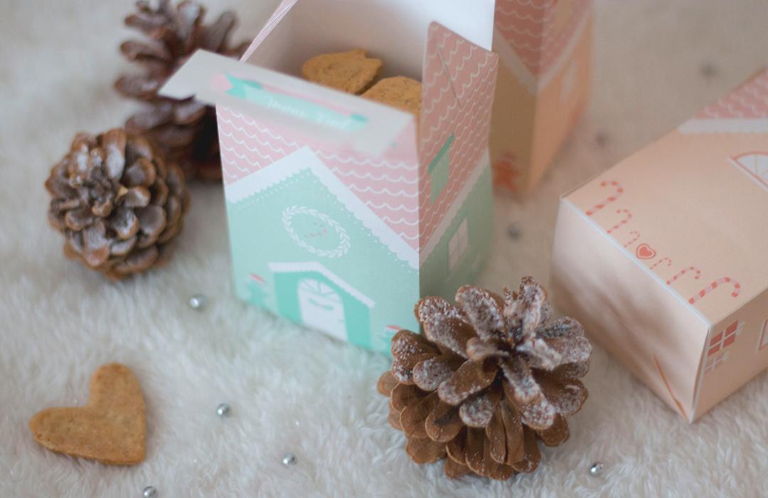 boite biscuits de Noël